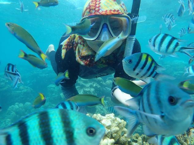 karimunjawa snorkeling
