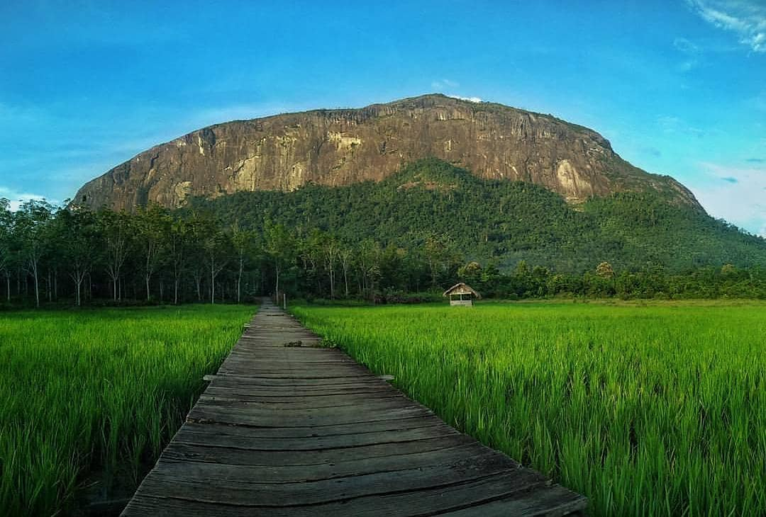 kelam hill tourist attraction in borneo