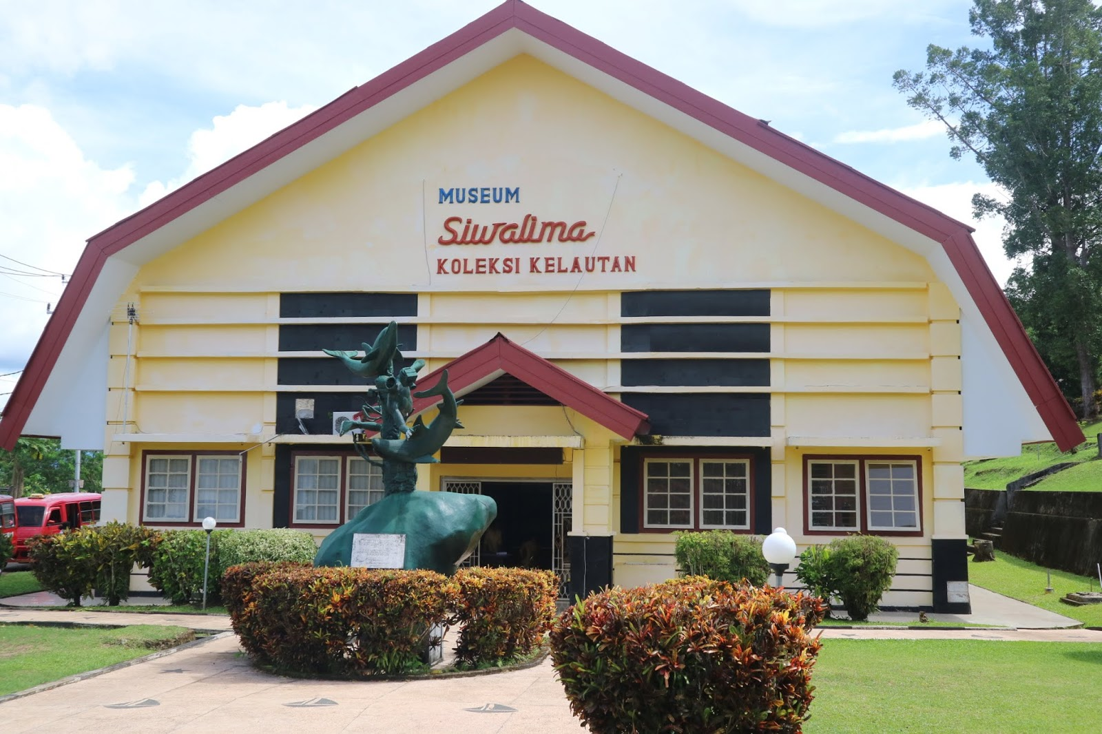marine collections in siwalima museum
