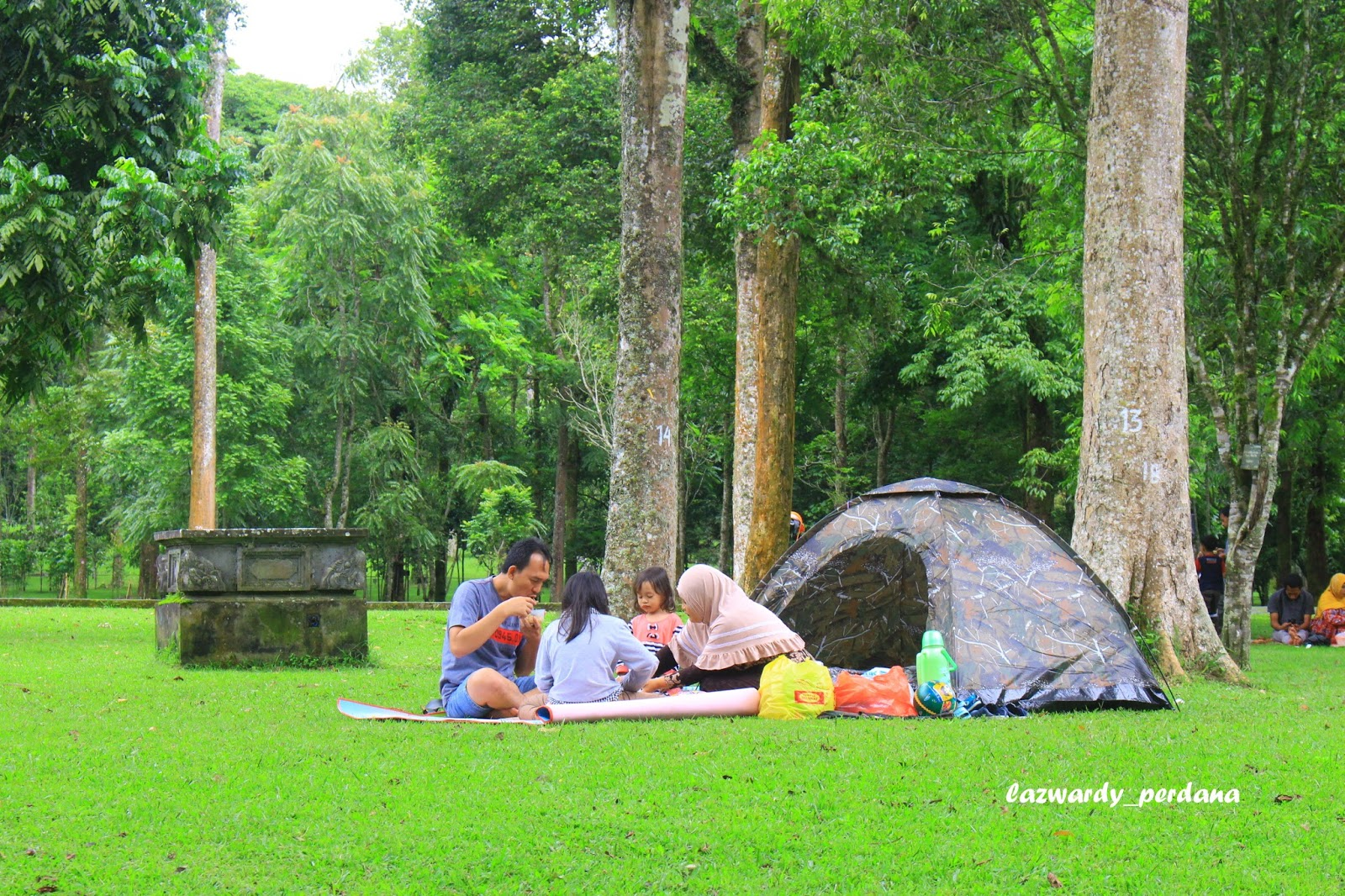 bedugul botanical garden is a place where you can pitch tents