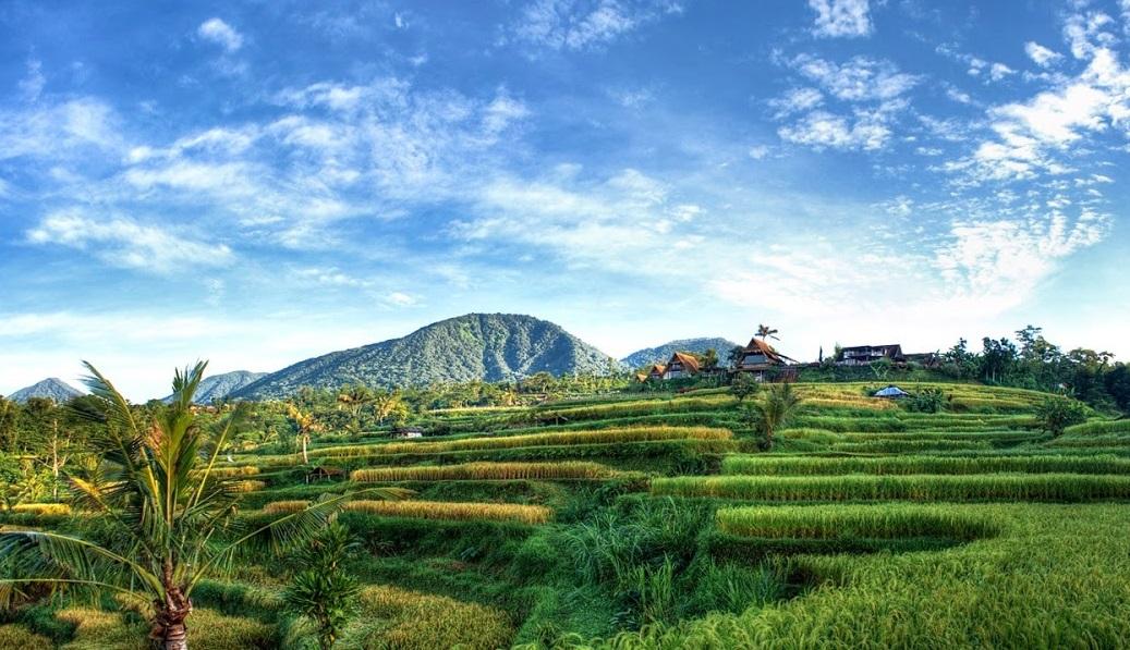 munduk village is one of the best honeymoon places in Bali