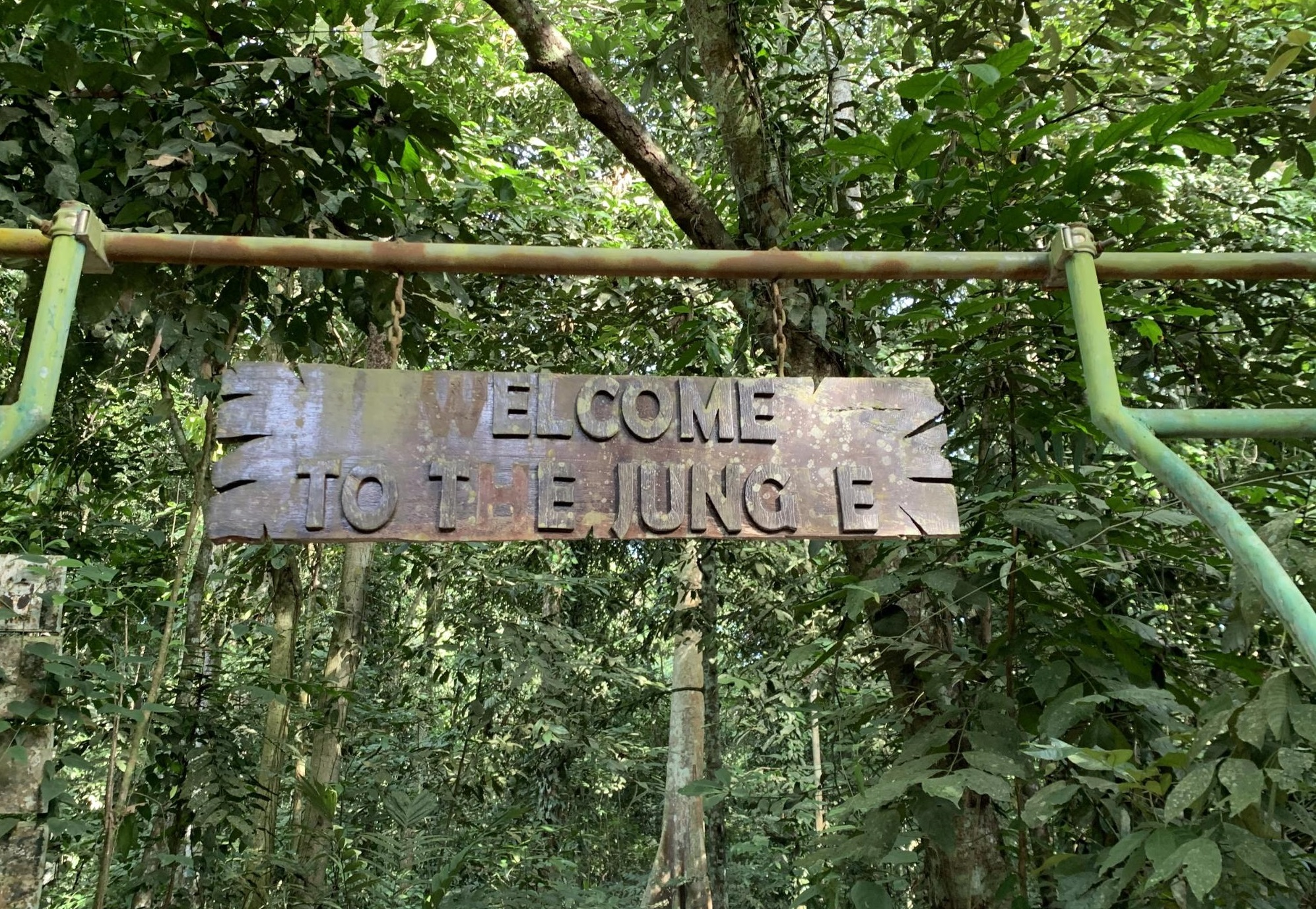 the natural condition of kutai national park