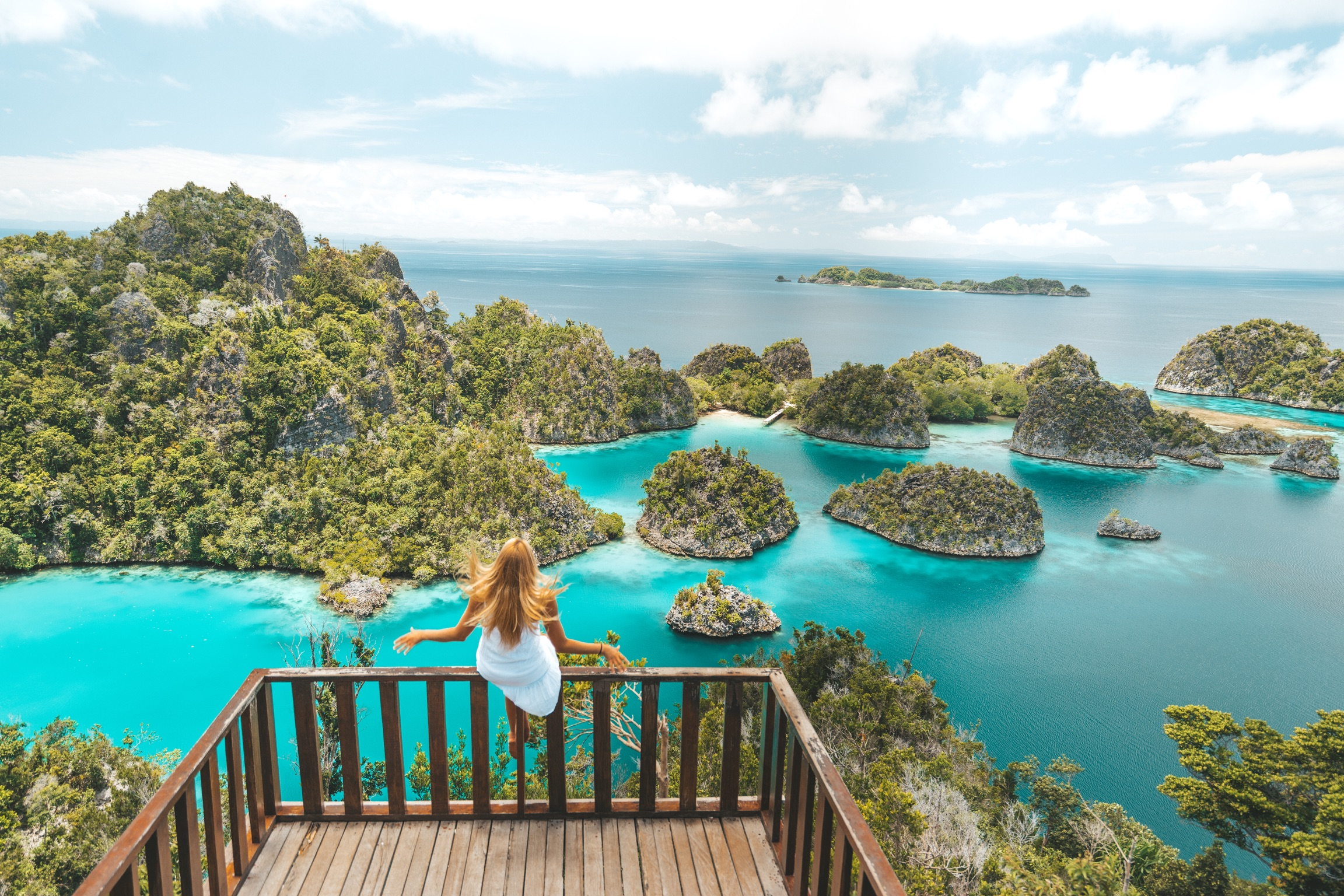 enchanting underwater scenery of Raja Ampat