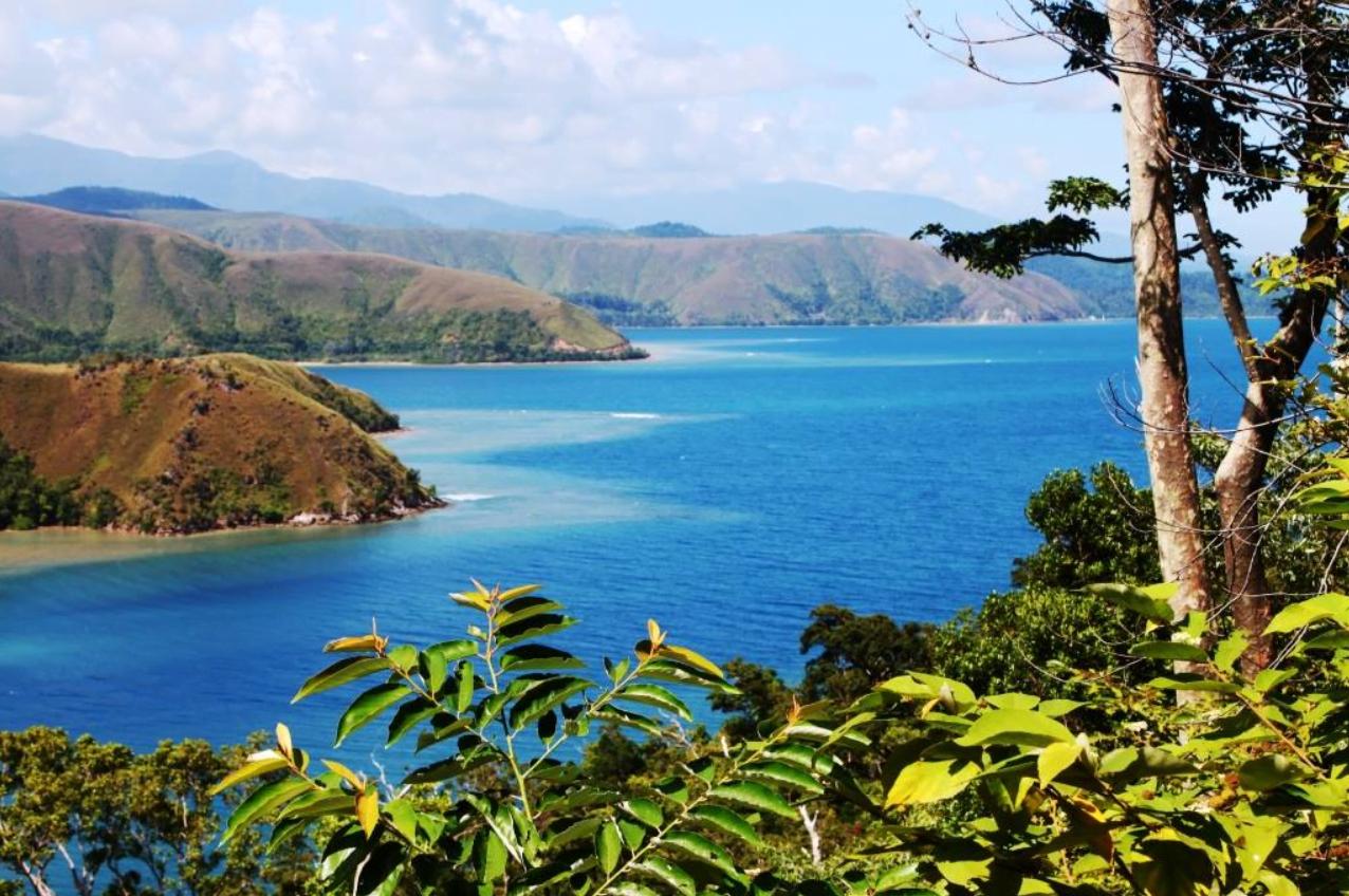 manokwari is the capital of west papua province