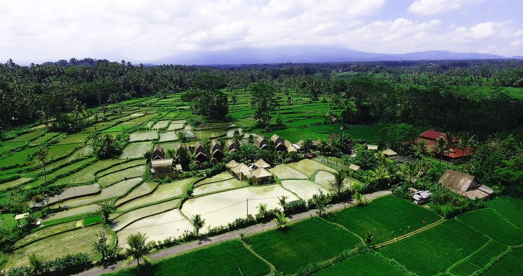 natural view of undisan village in bangli