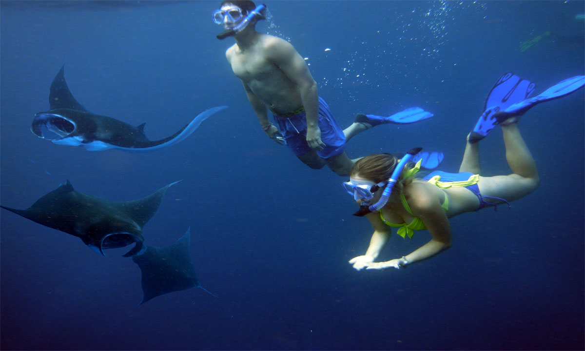 Unforgettable Snorkeling Experience