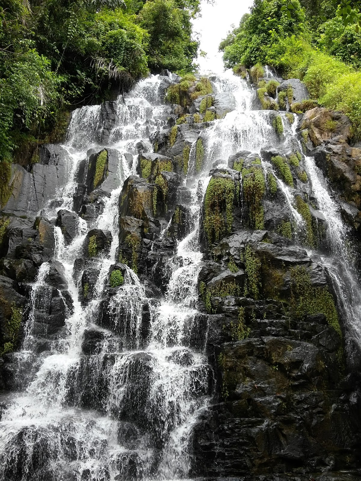 curug buluh is composed of 7 levels of stone steps with a height of up to 40 meters