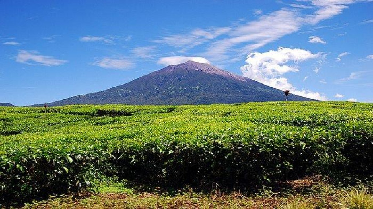 Kerinci Seblat National Park is listed as part of World Heritage Site by unesco