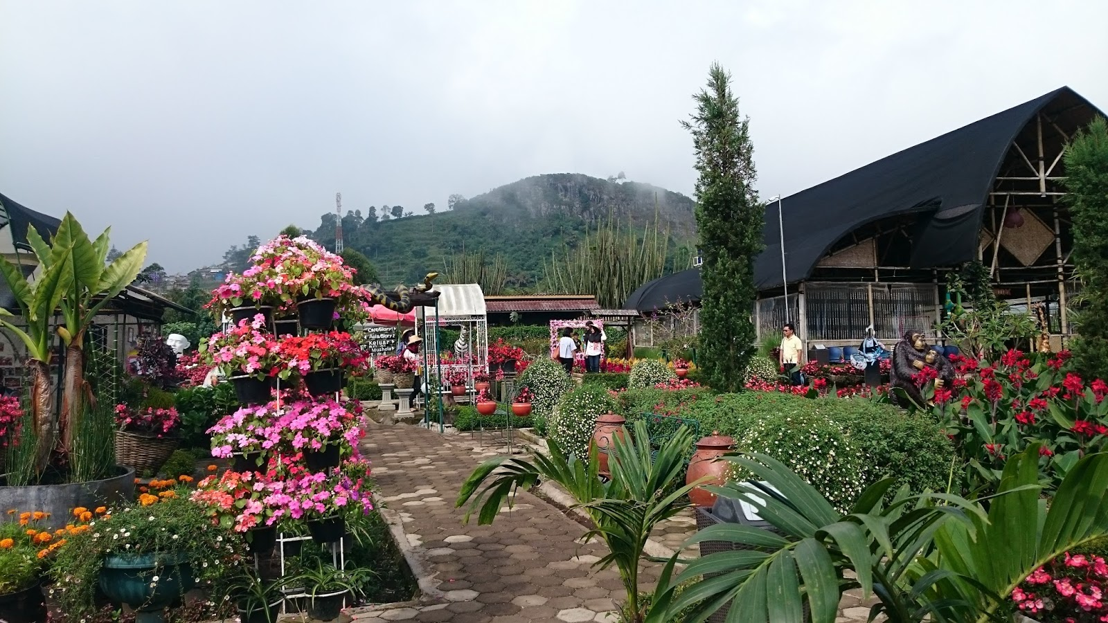 begonia park is romantic place in java