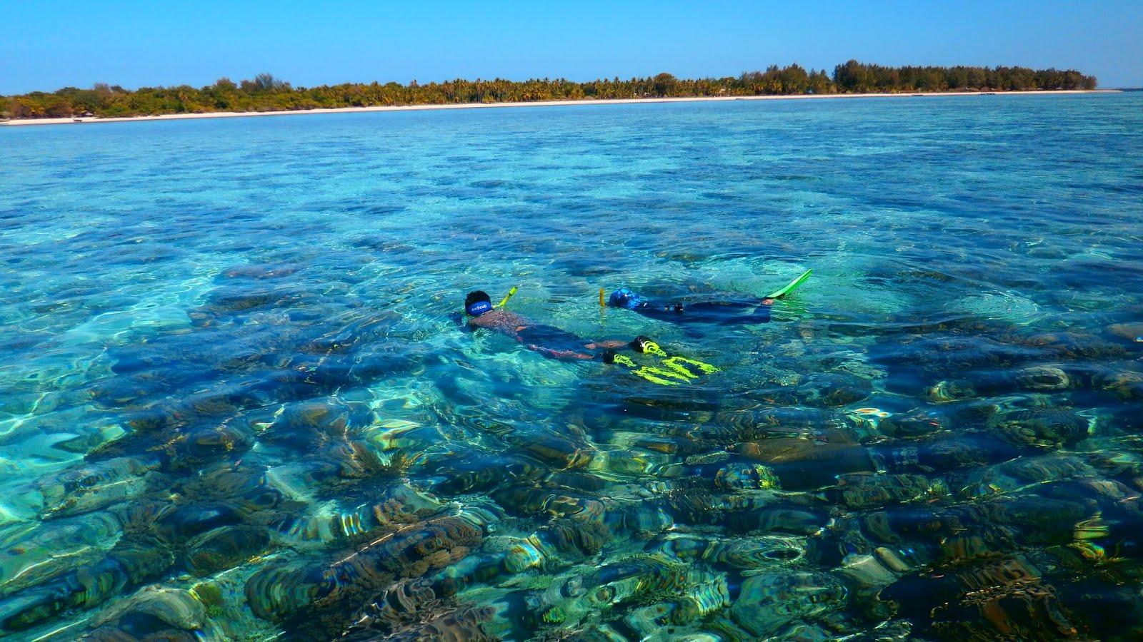 underwater beauty of hoga island