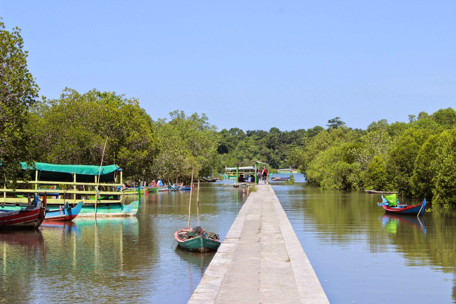 Bedul Mangrove Forest is still part of Alas Purwo National Park area
