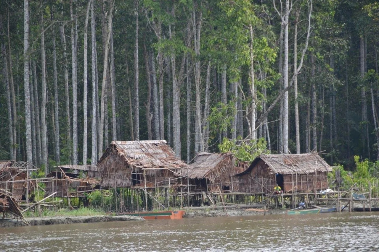 the asmat people village near the river