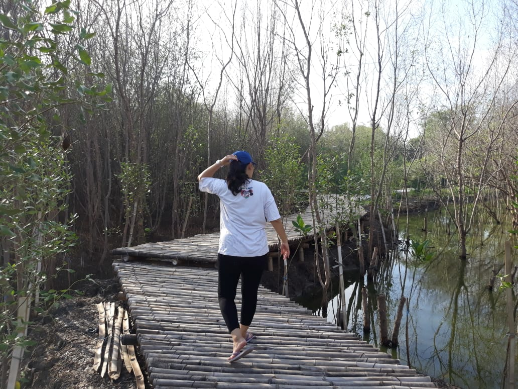 tourist walks in Gunung Anyar Mangrove Botanical Garden area